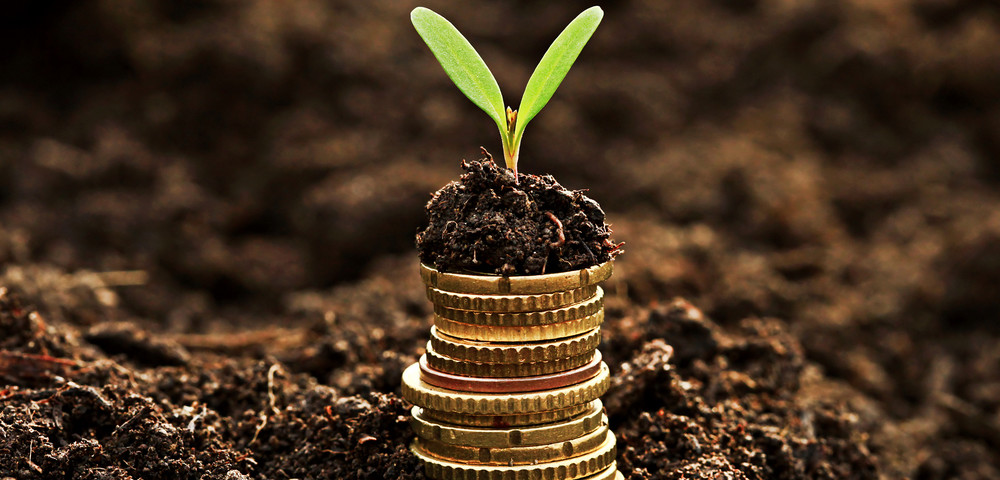 монеты в земле, via shutterstock