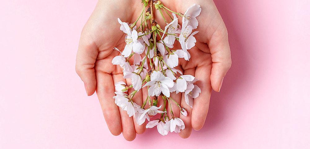 Воодушевляющая притча о цветах без запаха