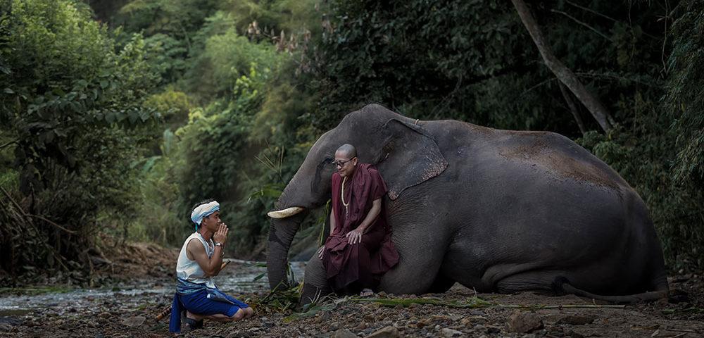 История о фермере, который пришел к Будде за советом