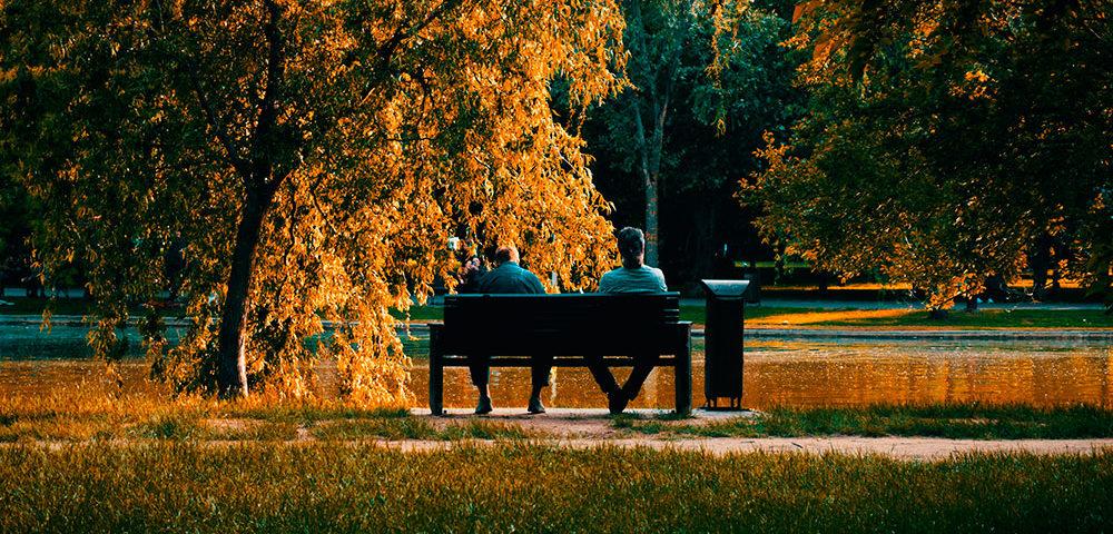 Скамейка в парку