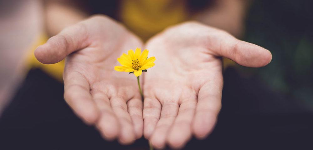«Все в твоих руках»: 3 короткие притчи, над которыми хочется задуматься